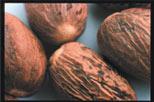 An Alternative To Coffee: Chai Tea | nutmeg | General Health Natural Health Sleuth Journal